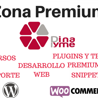 Producto - Zona Premium Dinapyme